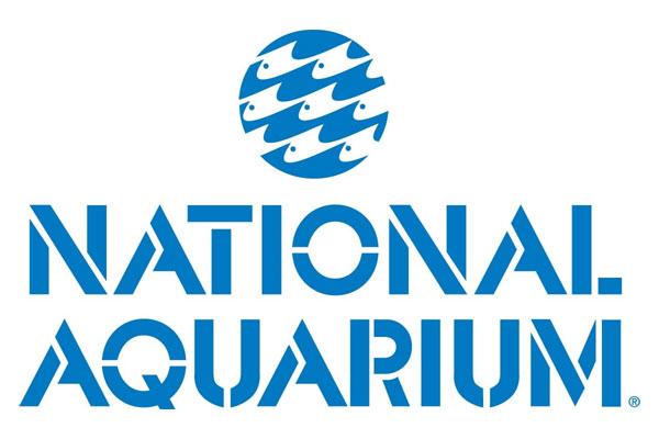 aquarium discount driverlayer search engine