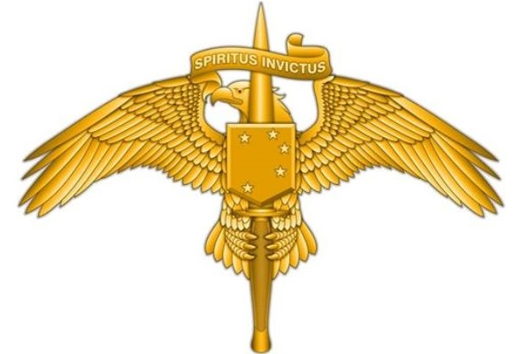 Marine Special Operators Get Their Own Insignia Pin ...