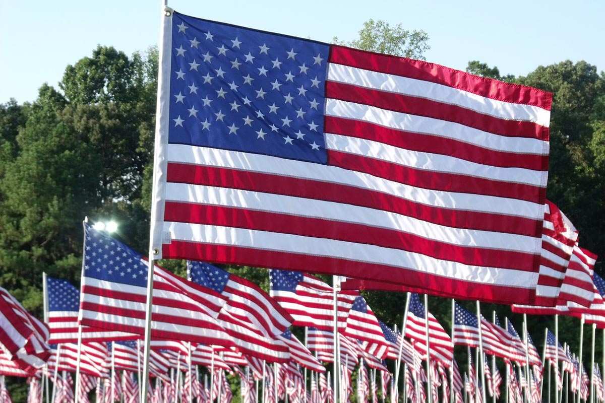 A big group of American flags waving in a field