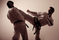 Is Your Martial Arts Training Backwards Image