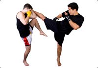 Mixed Martial Arts Vs Street Fighting Image