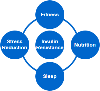 insulin resistance - fitness - nutrition - sleep - stress reduction