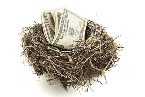 money in nest