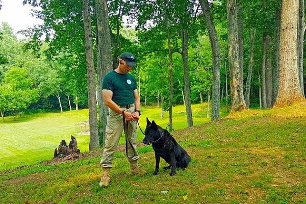 Global Dynamic Security trains dogs to use their natural hunting instincts to find bomb odors more quickly than conventionally trained and operated bomb-sniffing dogs. Photo courtesy of Global Dynamic Security