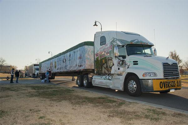 Transporting Christmas tree 600x400