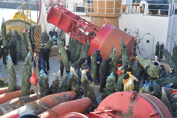 Coast Guard offloads Christmas trees 600x400