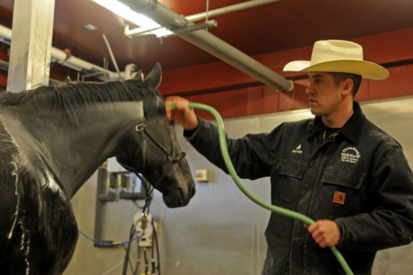 Army Sgt. Erik Wies with horse 600x400
