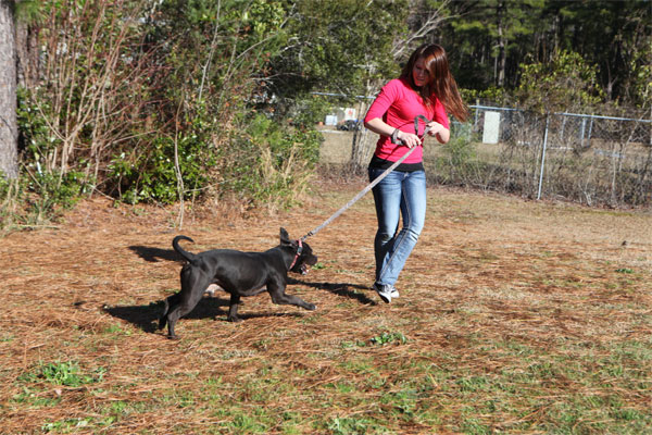 Marine Pfc. Emily D. Torres walking dog 600x400