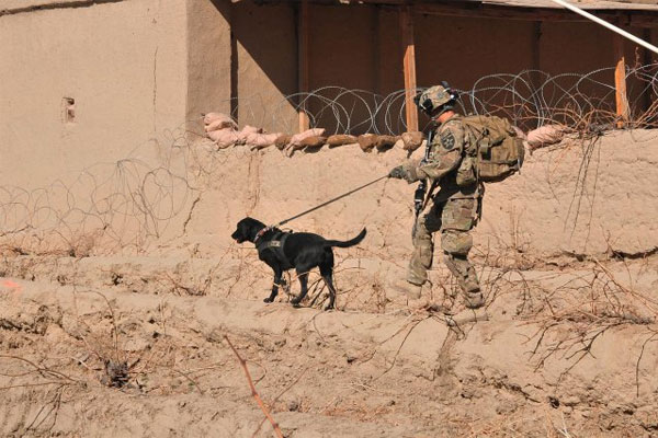 Pfc. Franklin Sena and dog 600x400