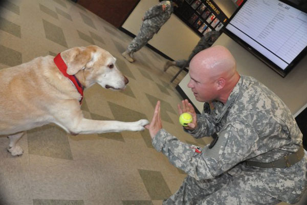 Sgt. 1st Class Charles Shuck and dog Gabe 600x400
