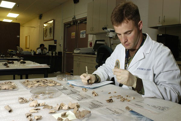 Cmdr. Kevin Torske, U.S. Navy, a senior forensic odontologist, catalogs the dental remains of a possible service member at the Joint POW/MIA Accounting Command headquarters at Hickam Air Force Base, Hawaii. (Source: U.S. Defense Department)
