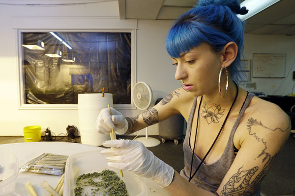 Stevie Askew, a worker at Sea of Green Farms, packs recreational marijuana into blunts that will be sold in stores in Washington state.  (AP Photo/Ted S. Warren)
