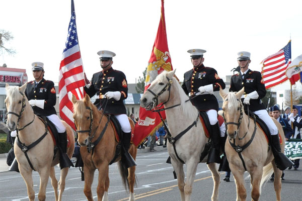 Young and Old Alike Drawn to Marine Corps Mounted Color Guard ...