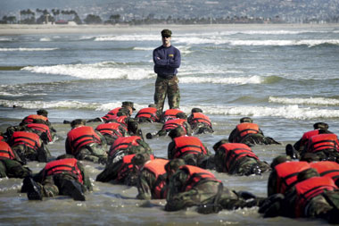 seal training beach 380x253
