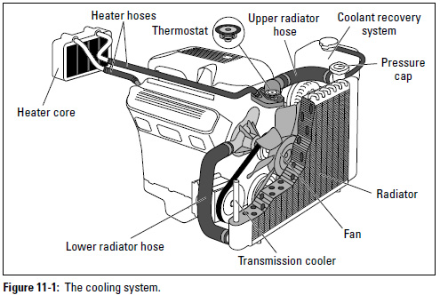 Auto Repair The Radiator on 2007 honda accord engine diagram