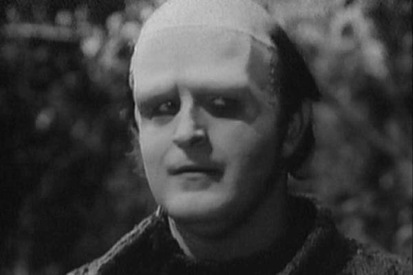 Peter Boyle as Franeknstein's monster