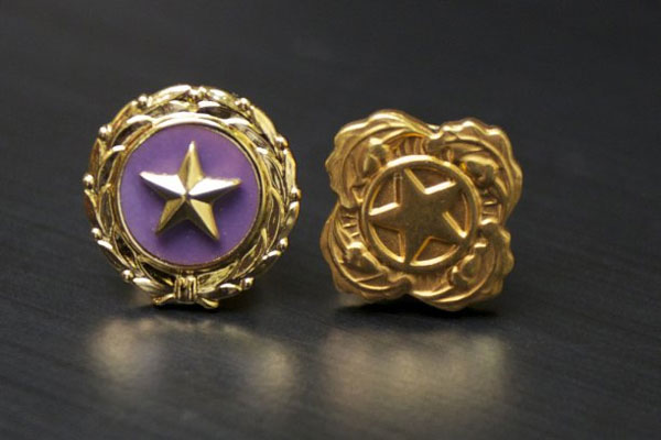 Gold Stars for Gold Star Wives