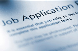 search job application